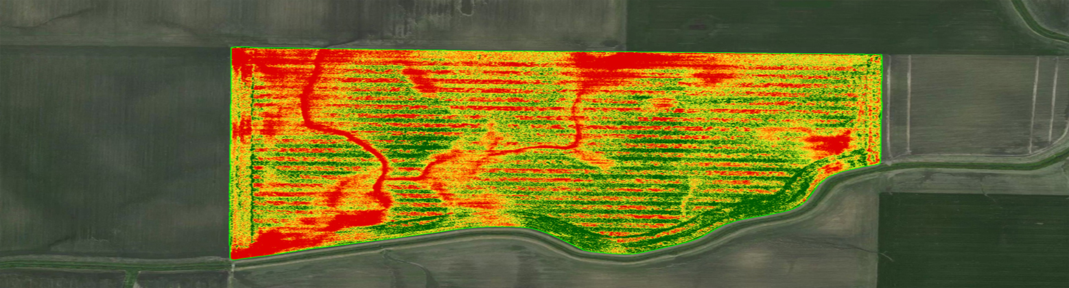 NDVI Survey Map display